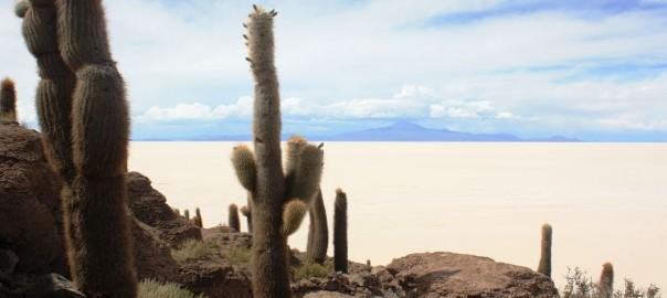 Tierra Latina voyage sur mesure bolvie