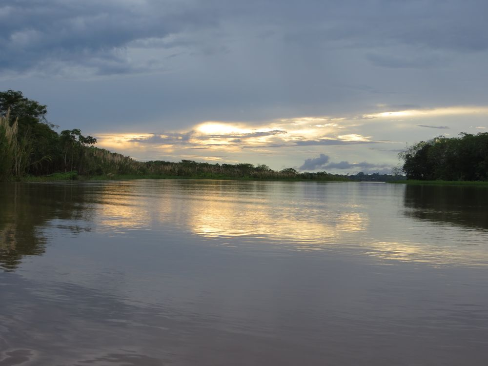 Perou Iquitos foret amazonienne peruvienne