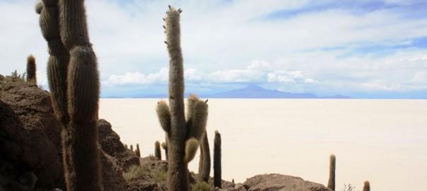 Bolivie Salar d'Uyuni : voyage sur mesure
