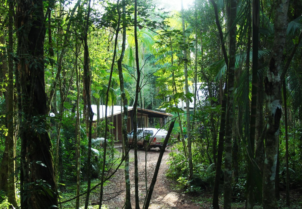 Iguazu immersion jungle Argentine Brésil Voyage Tierra Latina arrivee a l'ecolodge