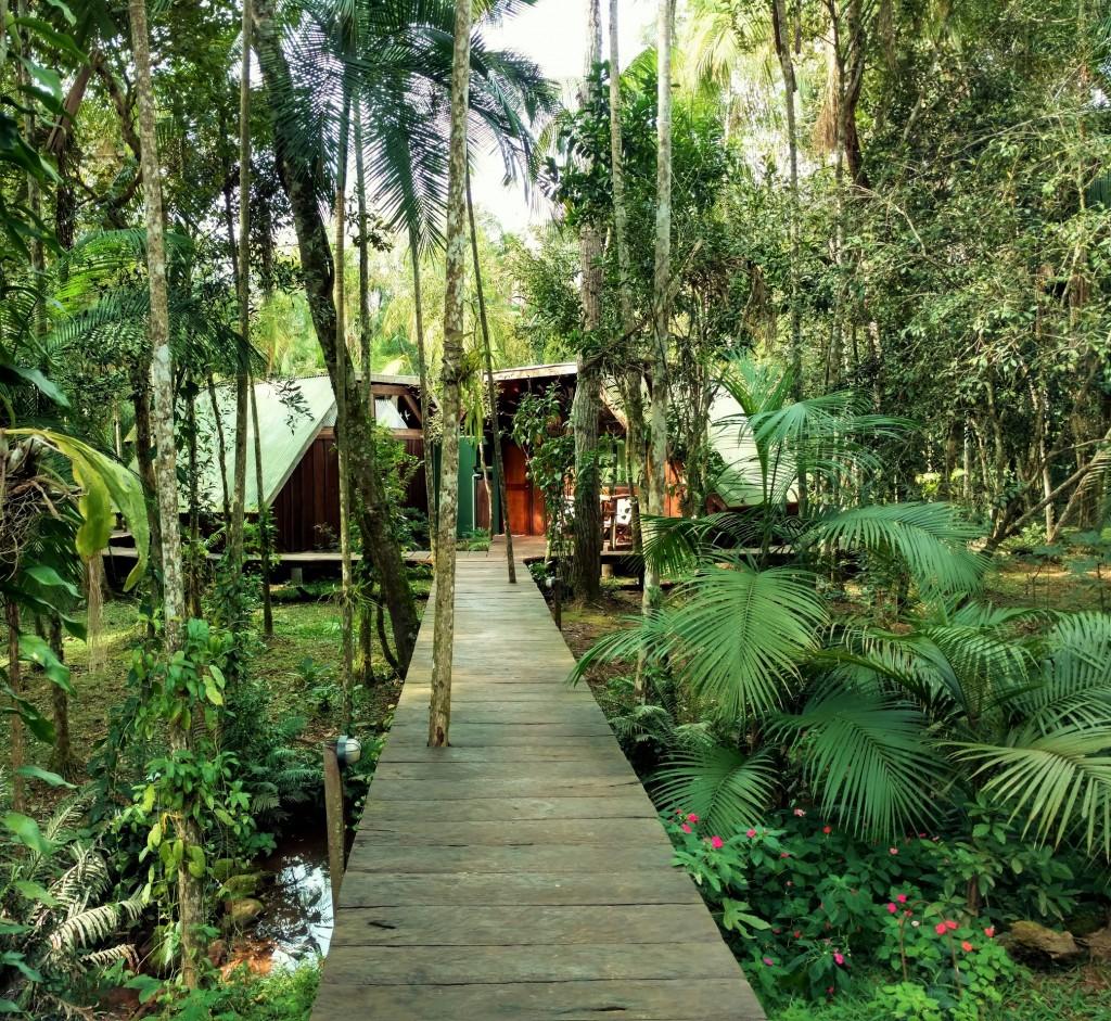 Iguazu immersion jungle Argentine Brésil Voyage Tierra Latina ecolodge
