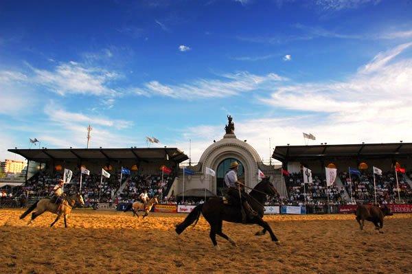 Buenos aires Nuestros caballos parc d'exposition La Rural chevaux