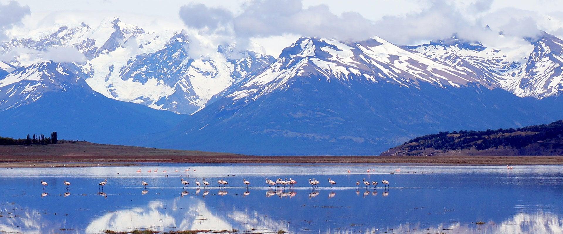 Patagonie Terre de Feu Cap Horn
