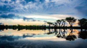 Bresil Amazonie Tierra Latina