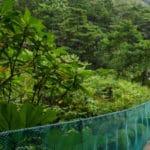 tierra-latina-christina-victoria-l-essentiel-du-costa-rica