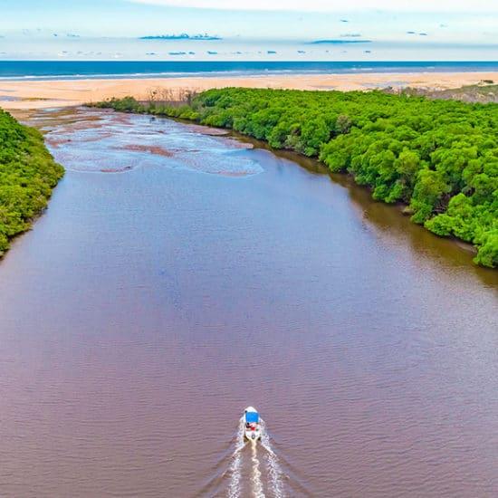 Bresil delta rio parnaiba nordeste bateau jungle