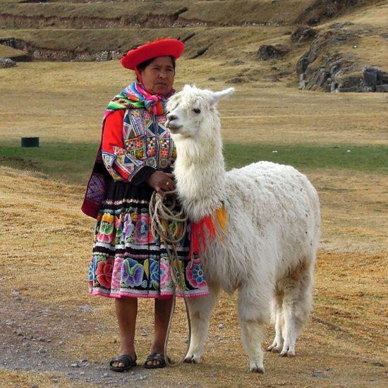 pérou lama habitants