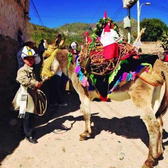 perou bolivie immersion habitant âne excursion vêtement traditionnel balade