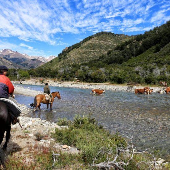 argentine patagonie bariloche rivière gaucho cheval traversée nature montagne paysage immersion