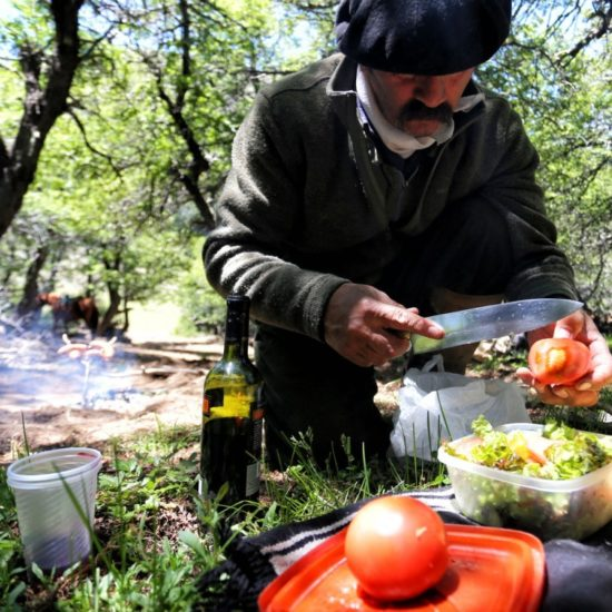 argentine patagonie bariloche gaucho immersion fermier asado repas chez l'habitant grillade barbecue vin salade pique nique nature