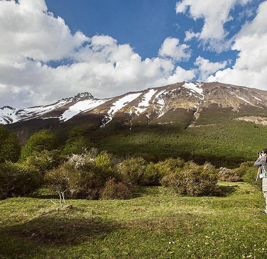 argentine patagonie glaciers parc national de la terre de feu ushuaia bout du monde immersion nature verdure montagne trek trekking randonnée