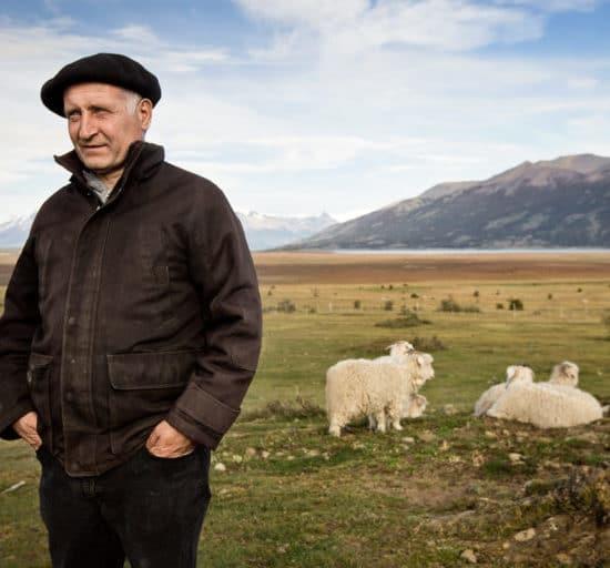 argentine patagonie estancia champs moutons gauchos paysage nature immersion paysan immersion à perte de vue montagne el calafate