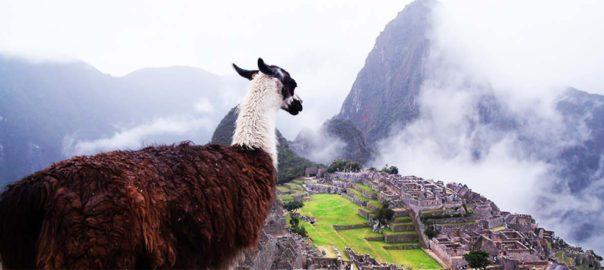 Tierra Latina Voyage sur mesure Pérou Machu Picchu