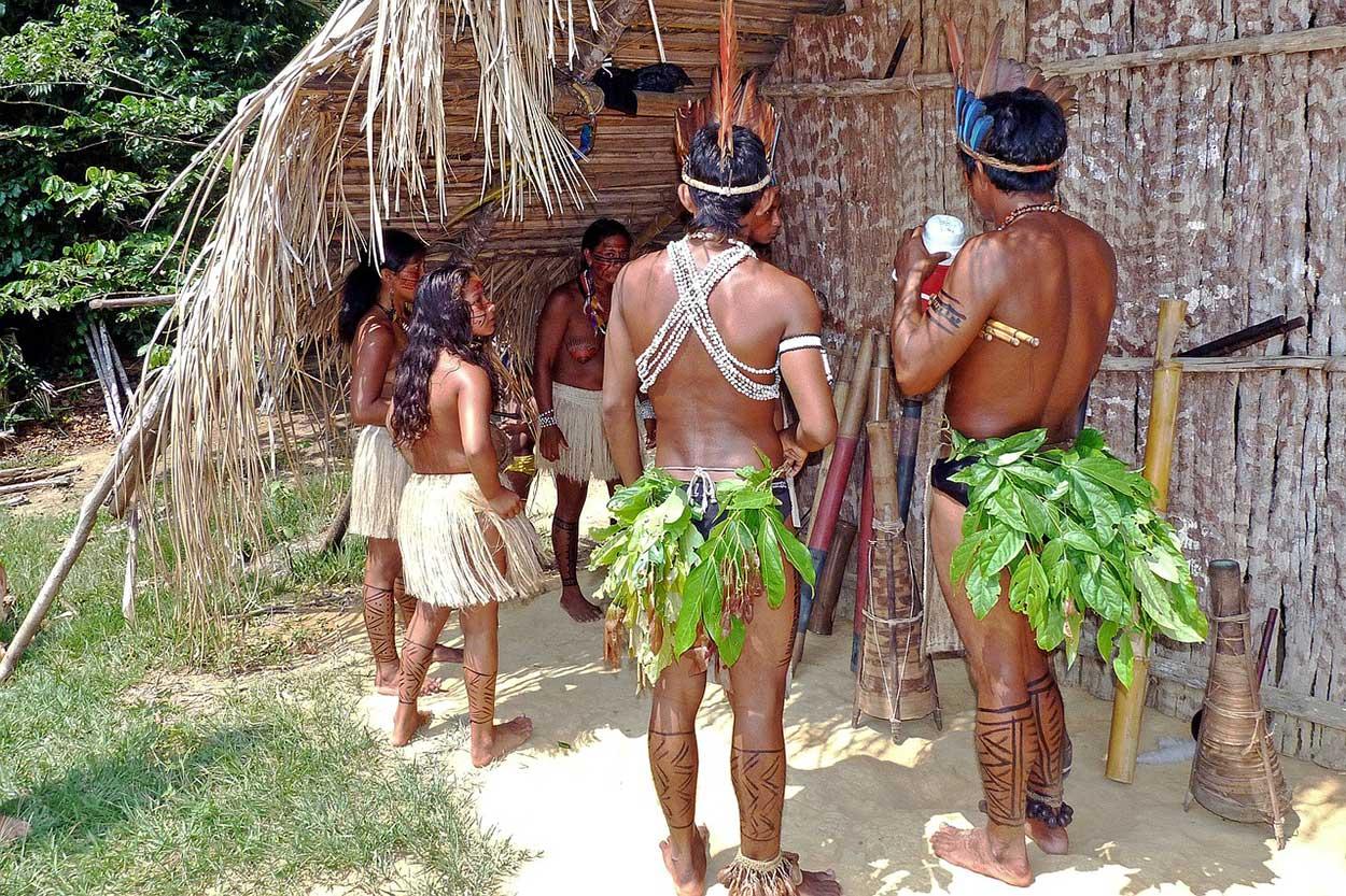 Bresil Manaus_Amazonie