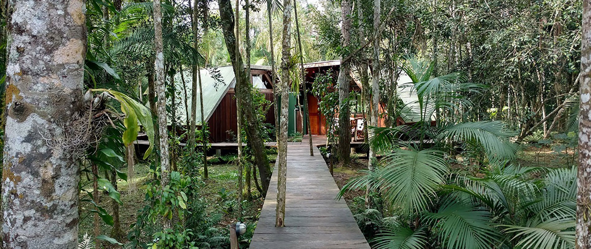 ecolodge iguazu argentine bresil jungle