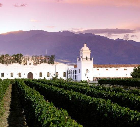 argentine cafayate nord ouest argentin vigne vin raisin viticulteur viticulture chai montagne vignoble le plus haut du monde architecture coloniale ciel rose