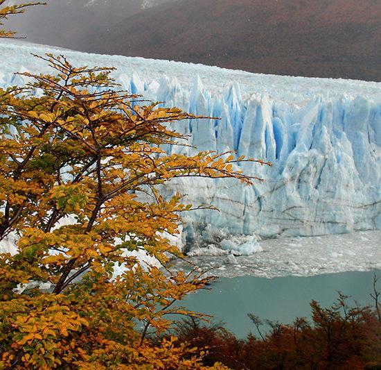 argentine trek trekking el calafate immersion dépaysement nature randonnée glaciers perito moreno automne patagonie