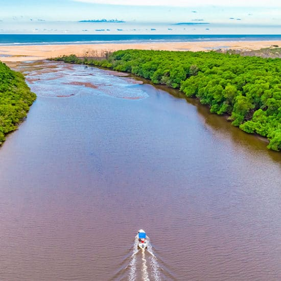 Rio Parnaiba Bresil delta jungle