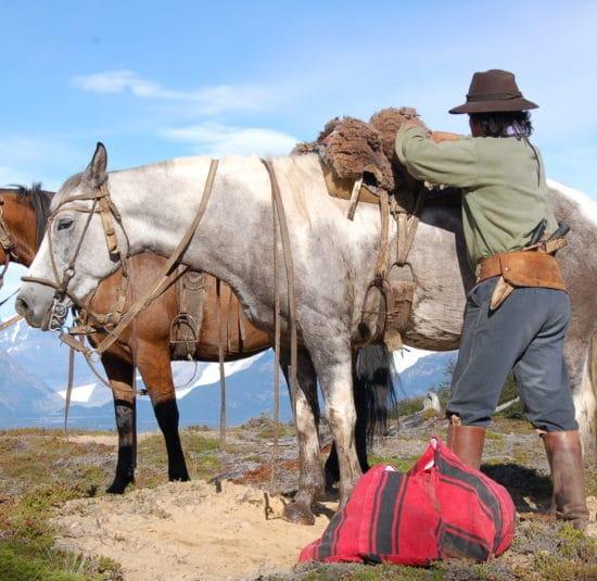 argentine estancia nibepo aike cheval nature faune campagne montagne dépaysement balade randonnée parc des glaciers patagonie gaucho la rosada