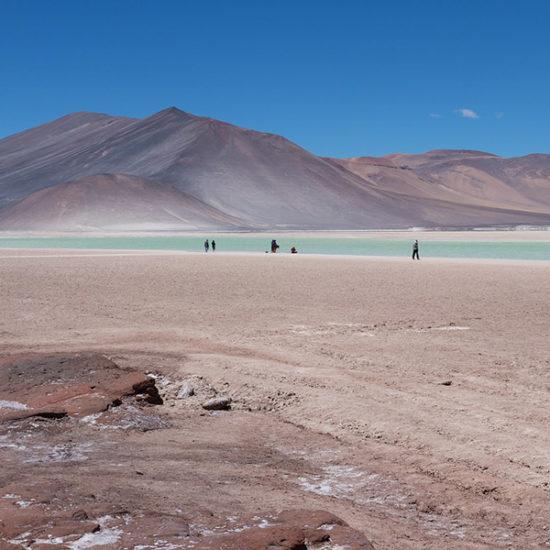Chili altiplano désert atacama