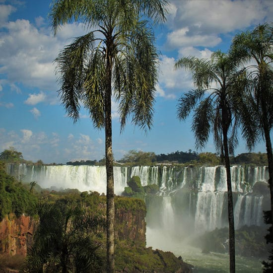 Chutes Iguazu jungle immersion panorama