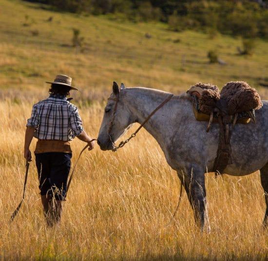 argentine estancia nibepo aike cheval nature faune campagne montagne dépaysement balade randonnée parc des glaciers patagonie gaucho