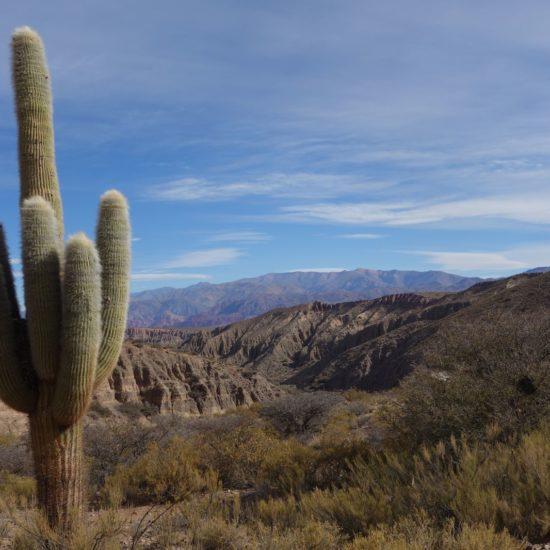 argentine nord ouest argentin quebrada humahuaca séjour chez habitant désert montagne immersion cactus vue imprenable