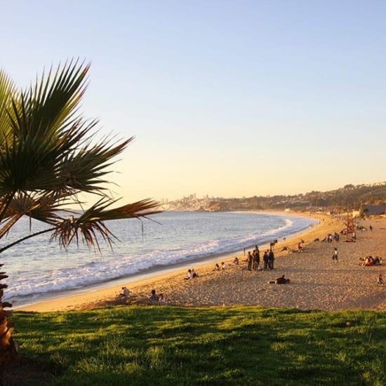 Chili vina del mar bord de mer côte plage palmiers