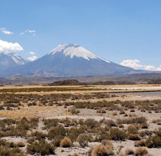 Chili parc lauca altiplano montagne nature