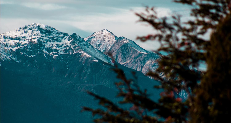 lacs montagnes foret chili argentine