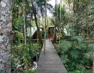 Ecolodge_Jungle_Iguazu_Argentine_Tierra-Latina