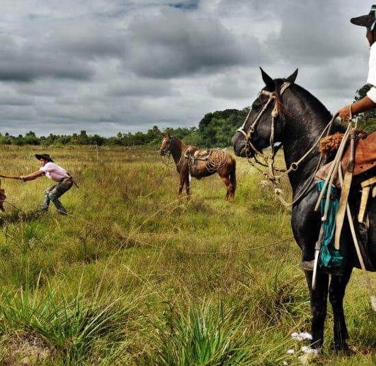 argentine estancia esteros del ibera nature corrientes gauchos cowboys cheval