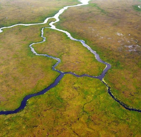 argentine estancia esteros del ibera nature corrientes réserve eau douce paysage vierge