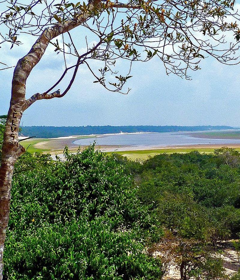 foret amazonie equateur