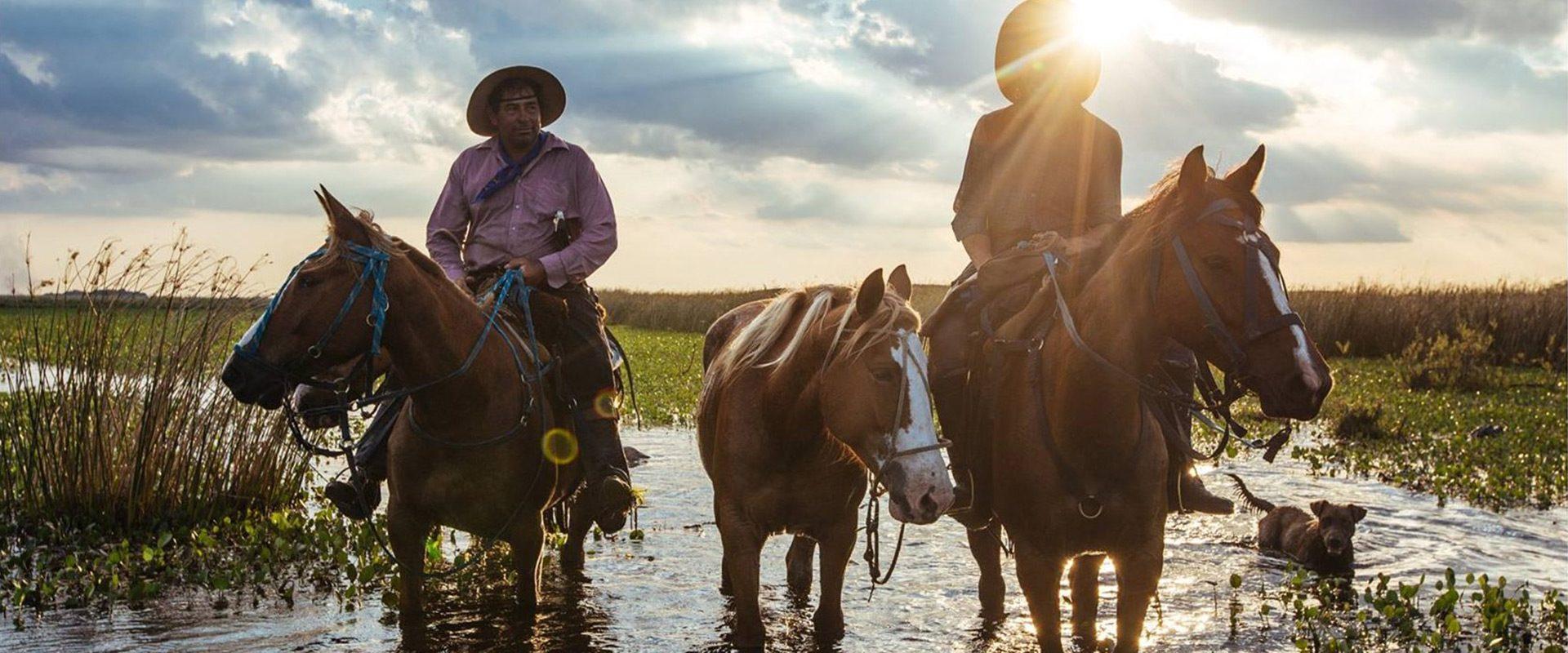 argentine corrientes chevaux patagonie esteros del ibera gauchos