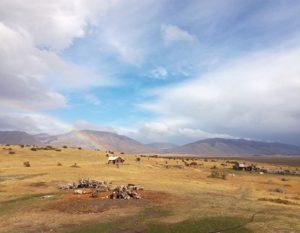 Tierra_latina_avis_voyage_argentine