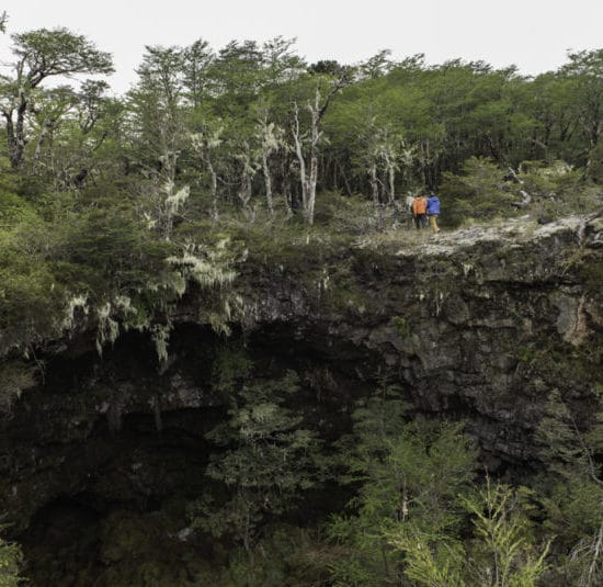 Chili patagonie randonnée nature forêt