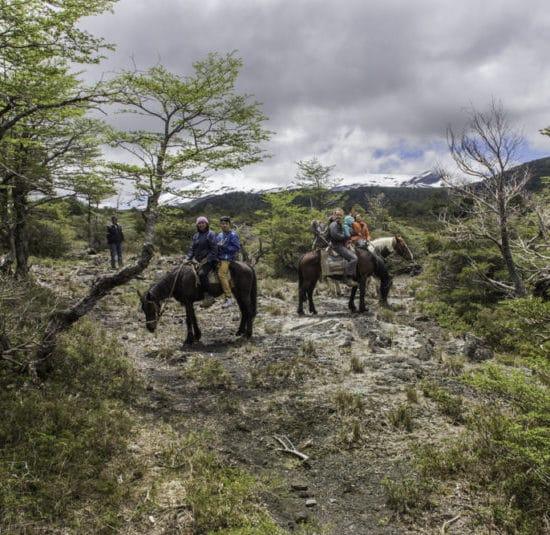 Chili patagonie randonnée forêt montagne cheval