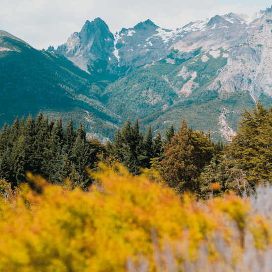 voyage-chili-argentine-bariloche-circuito-chico-tierra-latina-Photo-by-Geronimo-Giqueaux-on-Unsplash