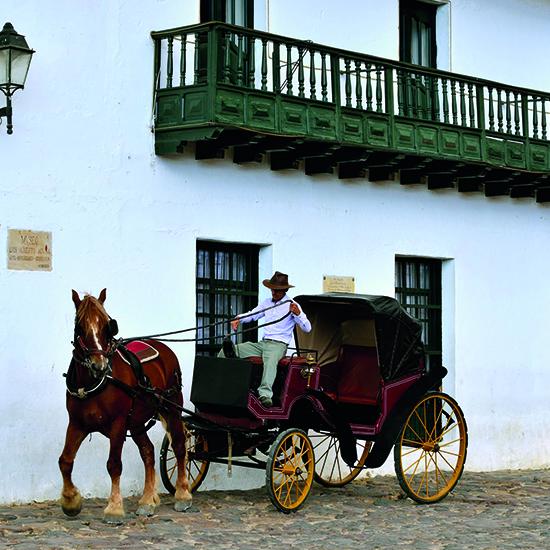 colombie rue pavée calèche cheval cocher immersion villa de leyva