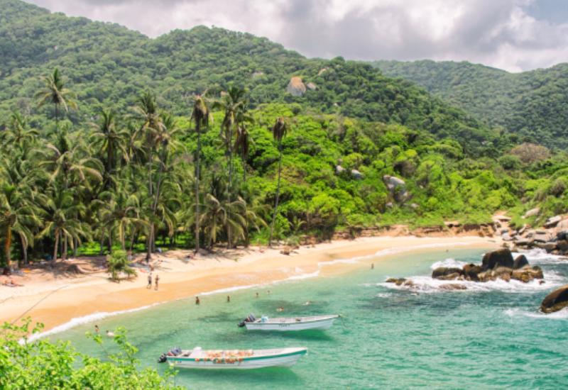 colombie tayrona plage palmiers bateaux eau turquoise