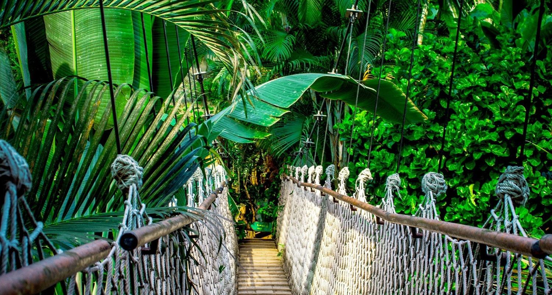 TierraLatina-Amazonie-Brésil-Pont-Suspendu-Trek