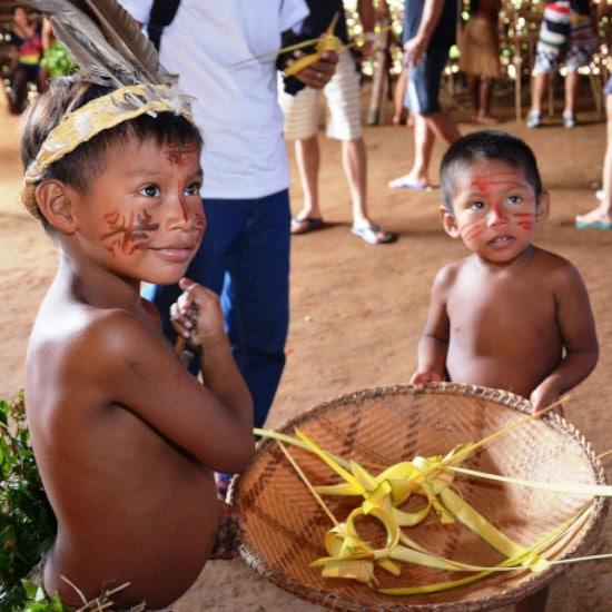 TierraLatina-Amazonie-Fleuve-Arbre-Manaus-Poumon-de-la-terre-Natifs-peuple-habitant