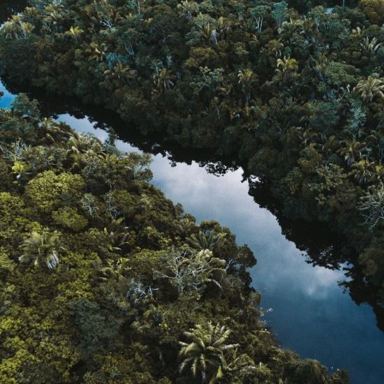 TierraLatina-Amazonie-Manaus-Fleuve-Nature-Aventure