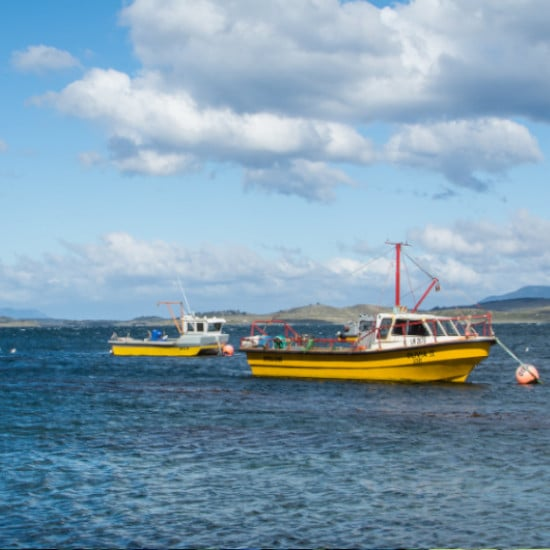 estancia ushuaia terre de feu voyage argentine tierra latina bateau mer