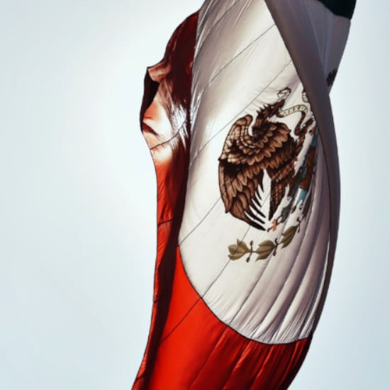 TierraLatina-Mexique-Mexico-Bandera