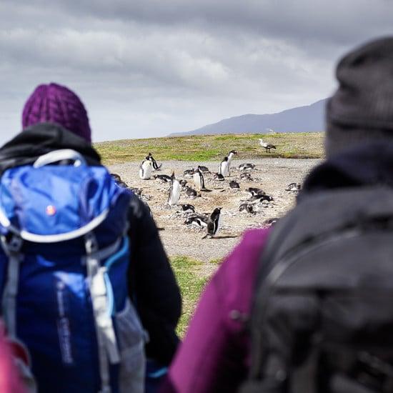 tierra-latina-aventure-madame-oreille-Voyage-exception-Patagonie