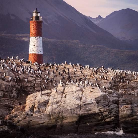 tierra-latina-ushuaia-phare-des-eclaireurs-photo-madame-oreille.png