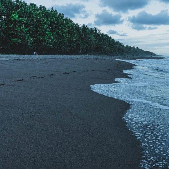 tierra-latina-etienne-delorien-parc-national-tortuguero-costa-rica
