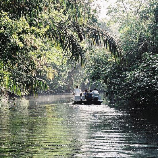tierra-latina-navigation-parc-national-tortuguero-costa-rica